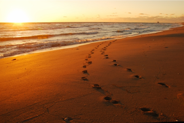 footsteps-in-the-sand1